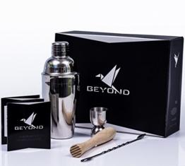 BEYOND Premium Cocktail Shaker Set aus Edelstahl: 500 ml Shaker, Stößel, Messbecher, Löffel und Broschüre -