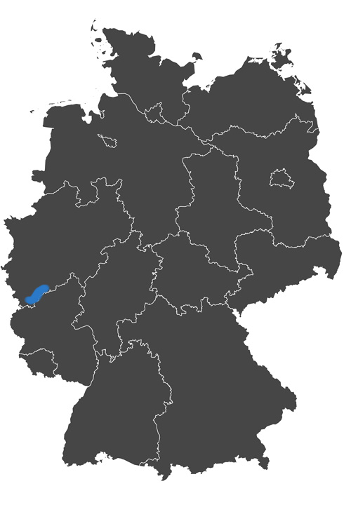 deutschlands wein region - grafik wein anbau region ahr